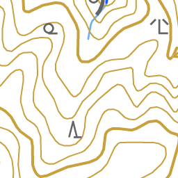 岩屋山でのきのこ観察会 アルさんの岩屋山 長崎県 舞岳の活動データ Yamap ヤマップ