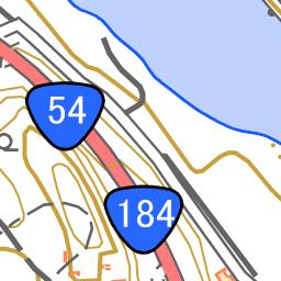 杯葉イチョウを探しに 19 12 01 なでしこさんの女亀山の活動データ Yamap ヤマップ